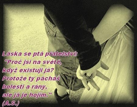 http://www.onmyown.estranky.cz/img/picture/96/laska-pratelstvi-..jpg